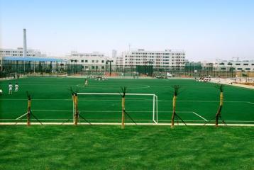 Playing Field